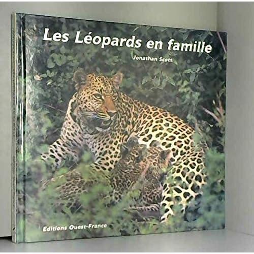 Les léopards en famille