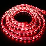 XUNATA 2m Tira de LED Regulable Rojo, 220V 5050 LED SMD 60 Unidades/m Luz Cuerda Dimmable, IP67 Impermeable para Decoración Interior