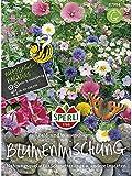 Feld- und Wildblumenmischung Wiesencharme ein- und mehrjährig
