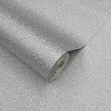 Paillettes argentées-Frise pour papier peint-10mètres de long x 17.6cm de large