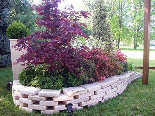 50 mattoni in pietra di trani 20x10x5cm blocchi per for Progettare giardini online