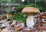 Pilzkalender (Wandkalender 2018 DIN A4 quer): Essbare Pilze aus heimischen Wäldern im Jahresablauf (Monatskalender, 14 Seiten