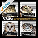 Nature's Greatest Mystery [Explicit]