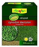 Flower 10796 10796-Semilla cynodon dactilon, 500 g, No No aplica 14.4x6x16 cm