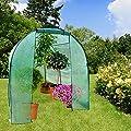 casa pura® Gewächshaus Libre | großes Foliengewächshaus mit Rundbogendach | 300x190x190cm | für Tomaten und andere schutzbedürftige Pflanzen von casa pura auf Du und dein Garten
