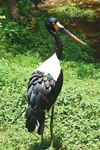 Say Hello to the Saddle-Billed Stork Journal: 150 page lined notebook/diary - Saddle-billed Stork