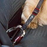 CURLI Auto-Sicherheitsgurt CAR SAFTY BELT für Hunde small – 30cm - 3