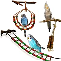 Boltz Bird Ladder and Hanging chewable Wooden Bird Toys for Budgies,Cockatiel,Finches,Kannur Birds- Made with Bamboo- 2…