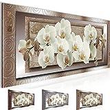Bilder Blumen Orchidee Wandbild 100 x 40 cm Vlies - Leinwand Bild XXL Format Wandbilder Wohnzimmer Wohnung Deko Kunstdrucke Braun 1 Teilig -100% MADE IN GERMANY - Fertig zum Aufhängen 205412c