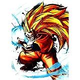 Fabulous Poster Affiche Sangoku Super Saiyan Mode 3 Goku Kameha Dragon Ball Z Manga DBZ