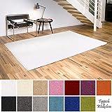 Shaggy-Teppich | Flauschige Hochflor Teppiche fürs Wohnzimmer, Esszimmer, Schlafzimmer oder Kinderzimmer | einfarbig, schadstoffgeprüft, allergikergeeignet (Weiss, 40 x 60 cm)