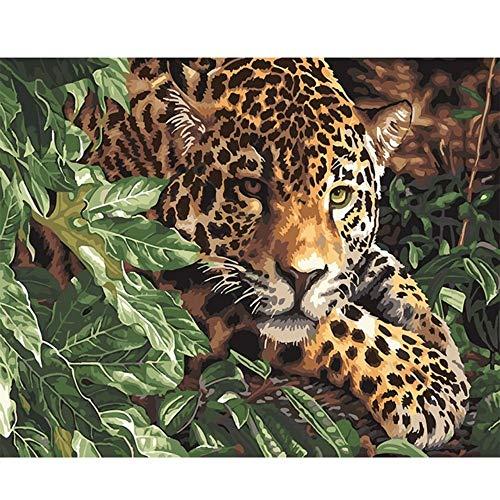 RYUANYUAN Ölgemälde Nach Zahlen Kits Auf Leinwand Moderne Handgemalte Acrylbilder Für Wohnzimmer Tier Gepard Leopard 16x20 inch (40x50 cm) Rahmenlos
