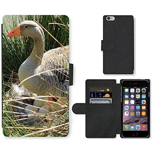 Just Mobile pour Hot Style Téléphone portable étui portefeuille en cuir PU avec fente pour carte//m00138758Wild Canard Canard Animaux Nature Oiseau//Apple iPhone 6Plus 14cm
