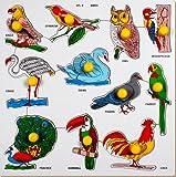 Little Genius Birds with Big Knob (Large)