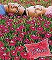 """BALDUR-Garten Winterhart Bodendecker-Nelke """"Red Pillow"""" 3 Pflanzen Dianthus von Baldur-Garten bei Du und dein Garten"""