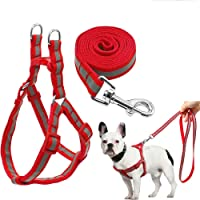 The DDS Store Nylon Reflective Dog Harness Leash Lead Set for Puppy (Puppy Small, Blue)