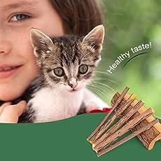 Huyang 5 Teile/Paket Haustier Katze Kauen Holzstäbchen Naturholz Kauen Reinigung Zähne Werkzeuge