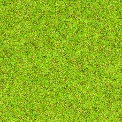 08300-noch-fruhlingswiesen-gras