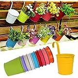 10 pcs Macetas Colgantes Decorativas de Flores, de Diferentes Colores, de Metal, Desmontables, para las Plantas / Hierbas / Aromas en Exterior o Interior, Jardín, Balcón
