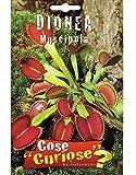 Vivai Le Georgiche Dionea Muscipula (Semente)