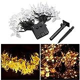LEDMOMO Lichterkette 4.5m 20 LED Schmetterling Solar String Lights für Weihnachten Home Hochzeit Party Schlafzimmer Geburtstag Dekoration (Warmweißes Licht)
