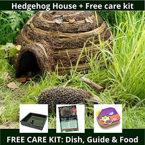 Hedgehog Igloo and FREE care kit Test