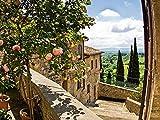 Artland Qualitätsbilder I Glasbilder Deko Glas Bilder 80 x 60 cm Landschaften Garten Foto Grün B6UY Rosen Balkon San Gimignano Toskanalandschaft