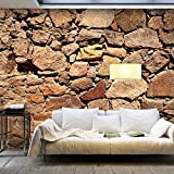 murando - Vlies Fototapete 500x280 cm - Größe Format XXL- Vlies Tapete - Moderne Wanddeko - Design Tapete - Steine Stein Steinoptik 3D Mauer f-A-0496-x-b