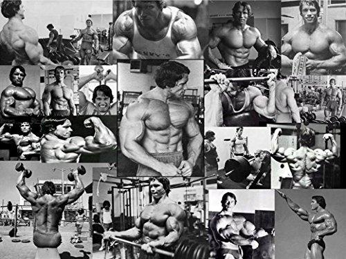 Arnold Schwarzenegger Olympia Bodybuilding Motivational Hochwertigen Laminiertes Papier Poster 43,2x 33cm