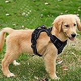 Funkeen® Hundegeschirr (Schwarz), kein Ziehen, verstellbar, Weiches Brustgeschirr, reflektierend, atmungsaktiv, Leichtes Hundegeschirr für Kleine, mittelgroße und große Hunde (S)