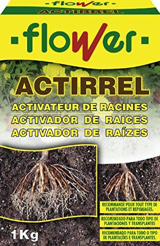 Flower 40555 Actirrel Activateur de racines 1 kg