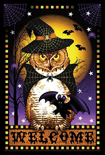 Toland Home Garten Halloween Fortune 31,8 x 45,7 cm Dekorative gruselige Willkommen Eule Hexe Garten Flagge