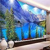REAGONE Mural De Decoración Para El Hogar, Cualquier Tamaño, Gran Fondo De Pantalla Personalizado Para Sala De Estar Forest Park Snowy Lakes Art Photography Europe, 350X245Cm (137.8 Por 96.5 In)