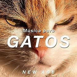 Música para Gatos - Sons Relajantes para Ayudar a Calmar a su Gato com Sons da Natureza