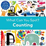 Counting (What Can You Spot?)