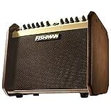 Fishman Loudbox Mini Amplificateur pour Instrument Acoustique Marron