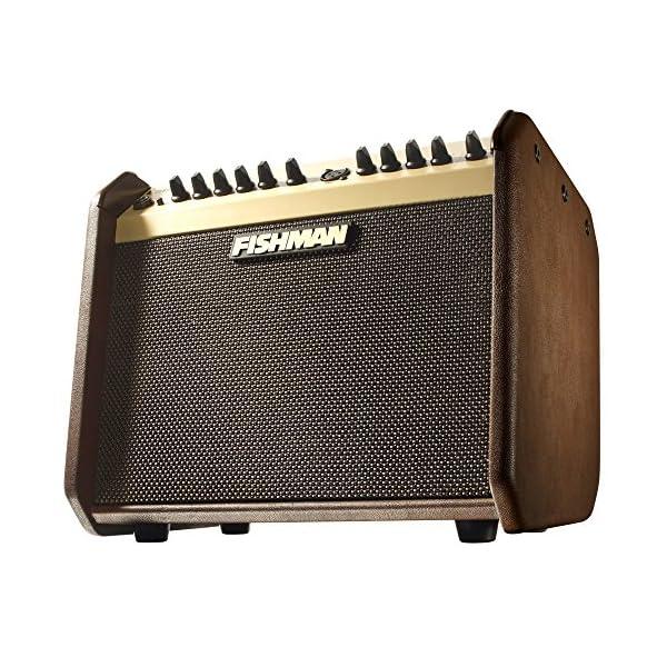 Loudbox Mini Acoustic Gui tar/ Instrument Amp Combo