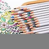 Ecloud Shop Bleistifte 72 farbige Set Für Erwachsene Coloring Rich Aquarell Bleistifte für Künstler Sketch/Erwachsene Secret Garden Malbuch/Kinder Künstler Schreiben/Manga-Grafik