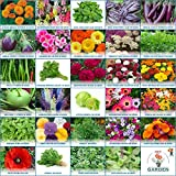 #9: Gate Garden Flower & Vegetable Seeds Sow 30 Seeds Varieties Collection (Heirloom/Hybrid) Seeds Exciting Garden Seeds For Kitchen Terrace Poly House Garden
