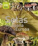 Setas de España y Europa (Vida verde)