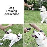 COFIT Bellkontrolle Hundehalsbänder Erziehungshalsband mit Ton und Vibration - Europäische Version