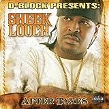 Songtexte von Sheek Louch - After Taxes