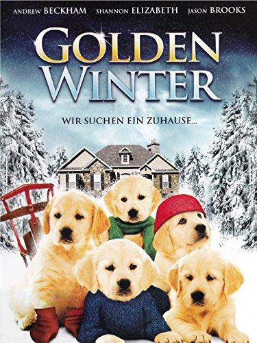 Golden Winter - Wir suchen ein Zuhause - Goldene Elizabeth-das