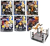 WWF WWE Wrestling - Juego de 6 figuras de cerebro de 3,75 pulgadas con anillo