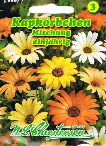 Kapkörbchen Mischung, einjährig, margeritenähnliche Blüte, dekorativ \'Dimorphoteca sinuata\'