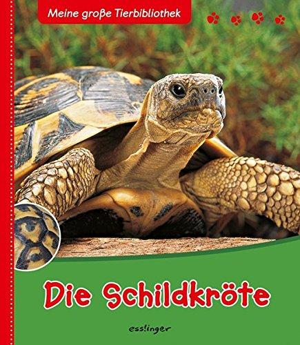 Die Schildkröte (Meine große Tierbibliothek)