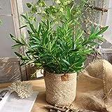 Künstliche Blume Yesmile 1 Pcs Zweig Wohnaccessoires Deko Kunstblumen DIY Blatt Garten Dekoration Blumen-1 (Grün)