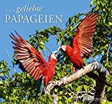 . geliebte Papageien Kalender 2015
