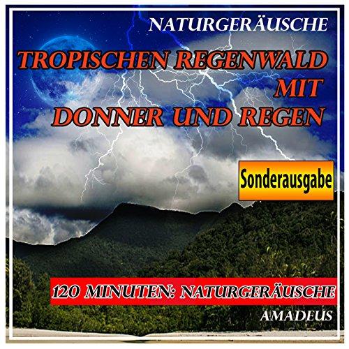 Tropischen Regenwald mit Donne...