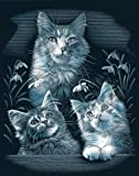 Reeves Silber Katzen Kratzbild, Gravurfolie, 30x20x1.8 cm